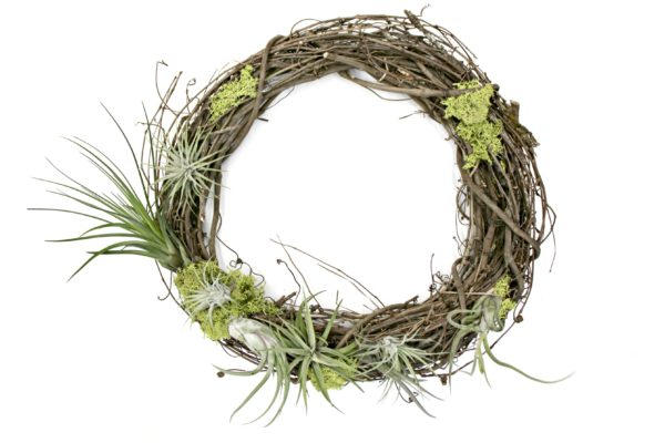 Lush Living Wreath
