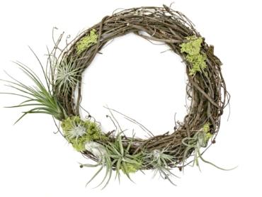 Lush Living Wreath